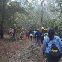ransai forest trek