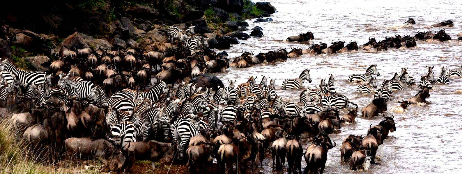 The Great Migration Safaris – Northern Serengeti