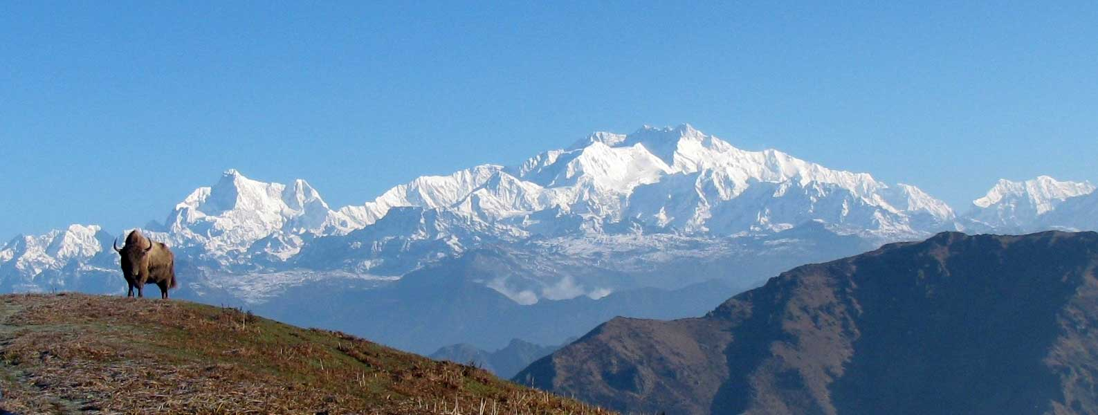 The Sandakphu Phalut trek