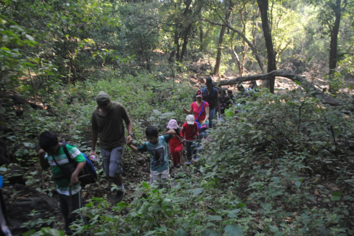 ransai forest trek