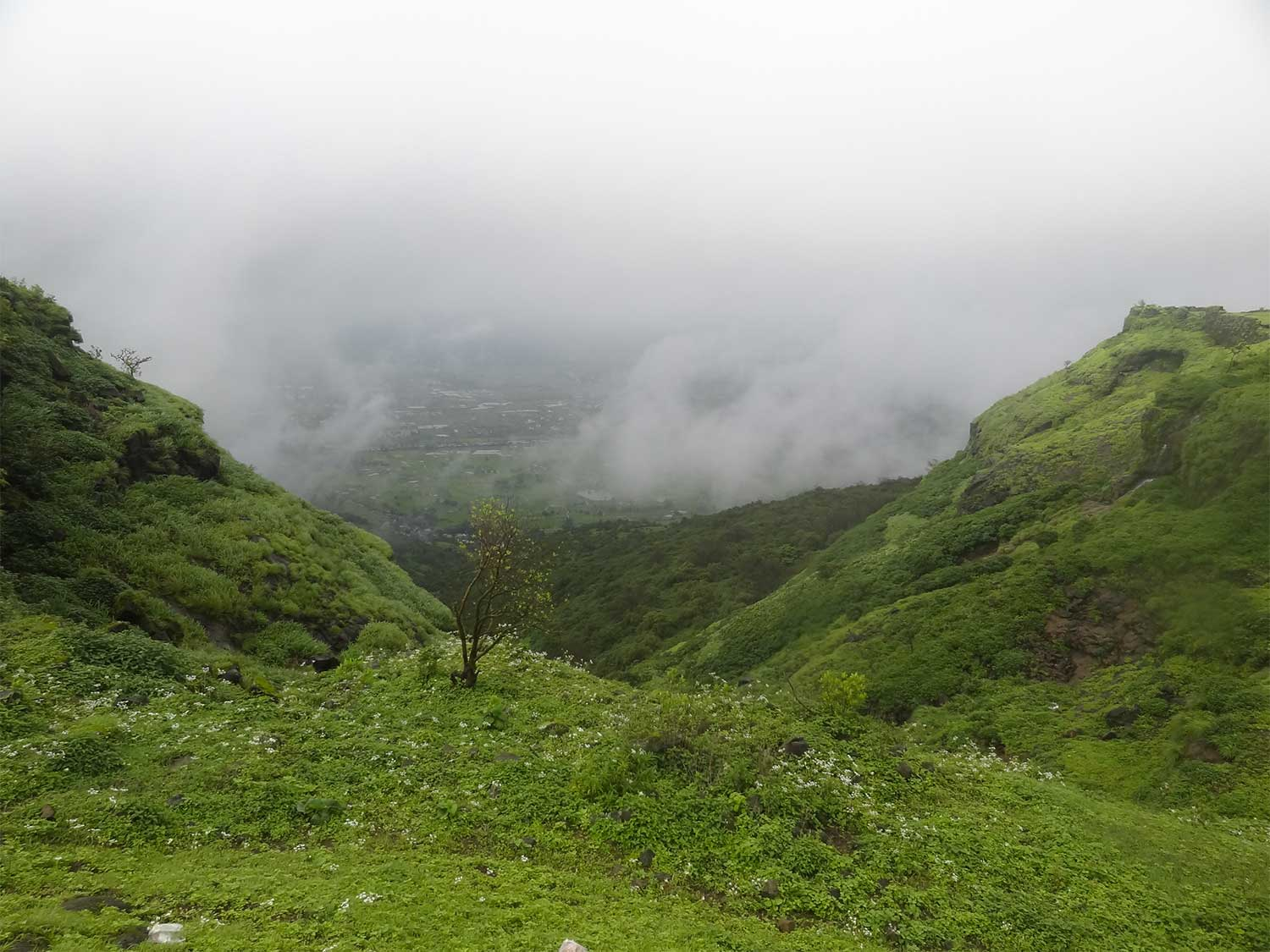 Monsoon Trek near Mumbai